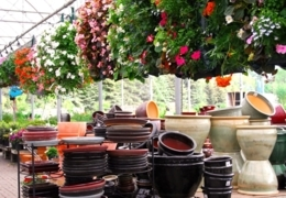 Garden centres, supply stores and nurseries in Toronto