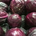Fruiterie du 440 - Magasins de fruits et légumes - 450-465-0440