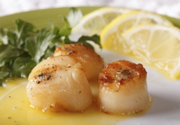 De la mer à votre assiette dans ces restaurants montréalais
