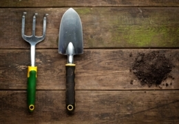 Dig this: Garden supply stores in Edmonton