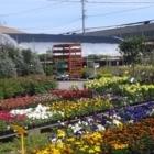Centre G M Pépinière Rive Sud Ltée - Nurseries & Tree Growers - 450-676-7690