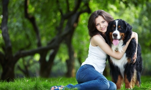 Best Edmonton dog parks for your favourite furry pal