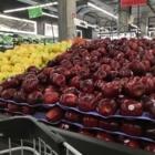 Marché Adonis - Conseillers en services d'alimentation - 514-933-4747