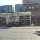 AlphaPlantes - Indoor Plant Stores - 514-935-1812