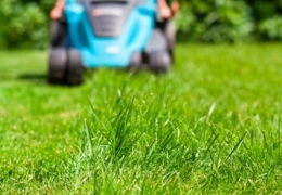 Fresh-cut finds: Where to shop for lawn mowers in Toronto