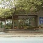 Healing Tree - Registered Massage Therapists - 604-428-7896