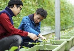 Edmonton gardening workshops to improve your knowledge