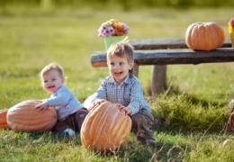 The Rural Review: Country farms near Toronto for fall fun