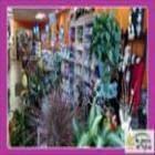 Au Jardin De Sylvie - Boutiques de cadeaux - 819-684-2772