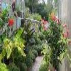 Centre De Jardin Del Esta - Pépinières et arboriculteurs - 450-763-5755