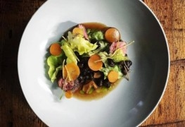 Chef Bites 2016 with Dave Mottershall