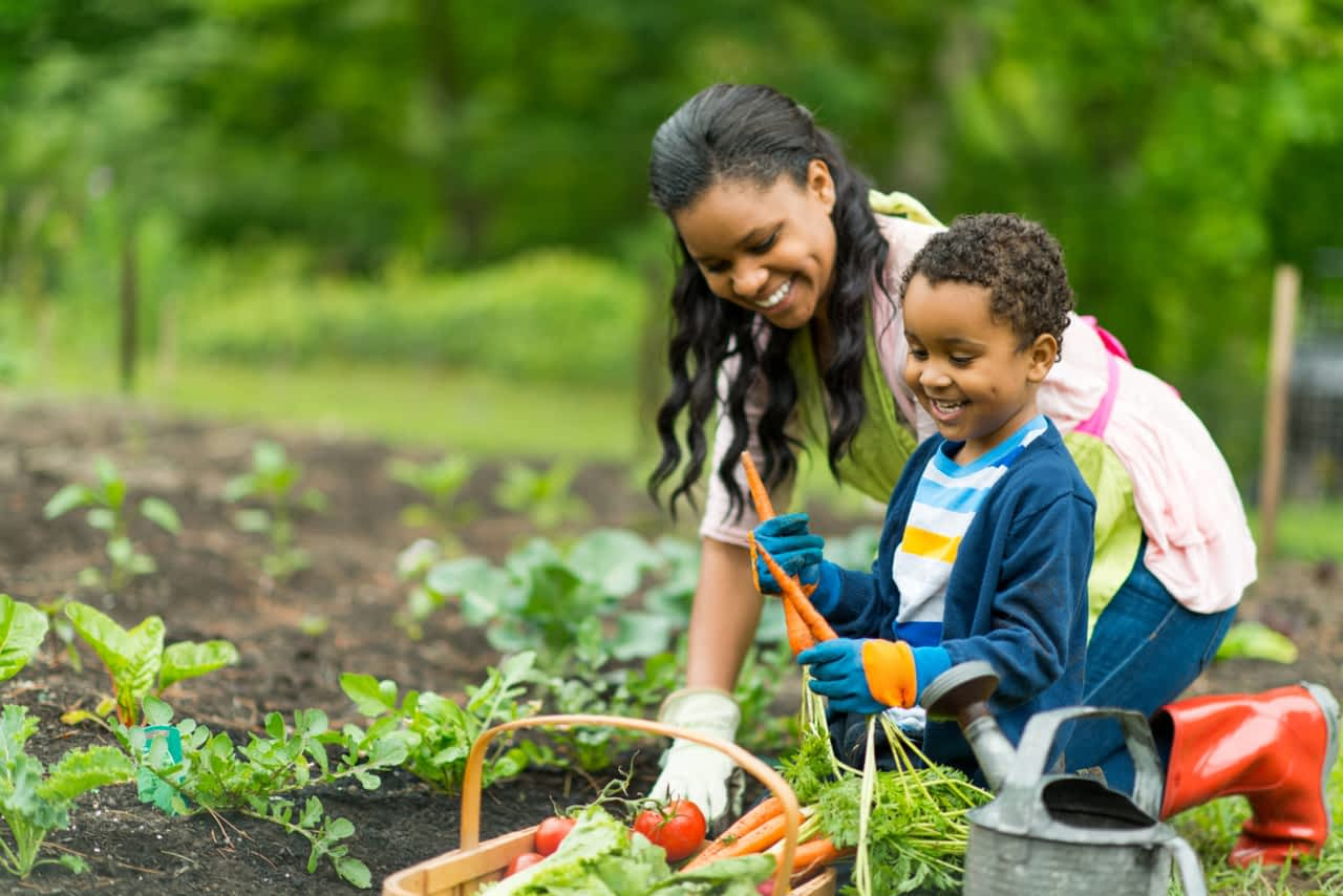 Over 35 Mother's Day gift ideas for all kinds of Moms: 8. For gardening Moms