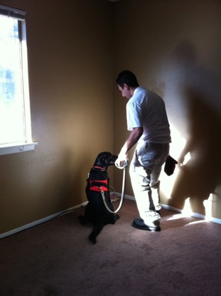 K9 Inspectors - Pest Control Services