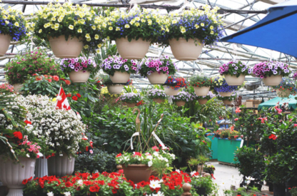 Shelmerdine Garden Center Ltd - Garden Centres - 204-895-7203