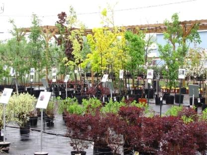 Les Serres Pierre Brisebois Et Fils - Garden Centres - 450-963-8693