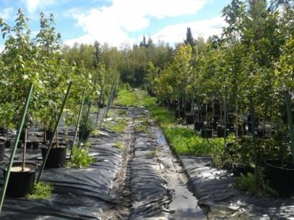 Les Plantations Univert - Pépinières et arboriculteurs