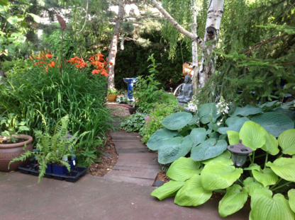 Ecofirma - Landscape Contractors & Designers