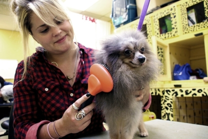 Paw Prints Ventures - Pet Grooming, Clipping & Washing - 604-733-1144
