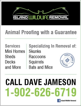 Island Wildlife Removal - Service de capture d'animaux - 902-626-6719