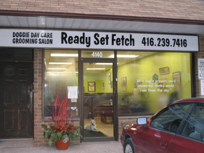 Ready Set Fetch - Pet Grooming, Clipping & Washing - 416-239-7416