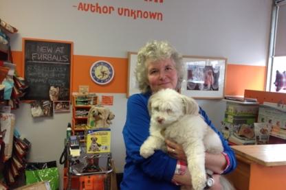 Furballs Pet Stuff - Dog Breeders - 647-352-6066