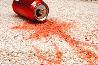 Butler Carpet Cleaning Service 2013 Ltd - Carpet & Rug Cleaning