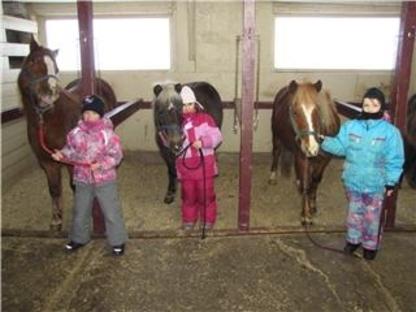 Cheval Défi Inc - Écoles et cours d'équitation - 418-878-5522