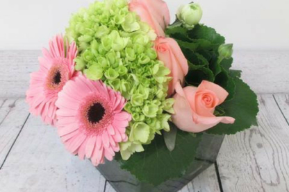 Euro Style Flower Market - Florists & Flower Shops - 905-634-6100