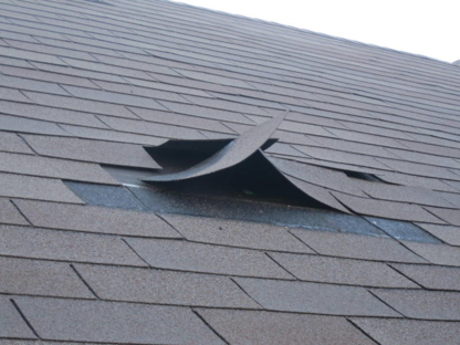 Apex Roofing & Eavestrough - Home Improvements & Renovations - 519-217-0109