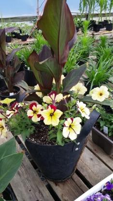 Fairytale Garden Centre - 403-401-2685