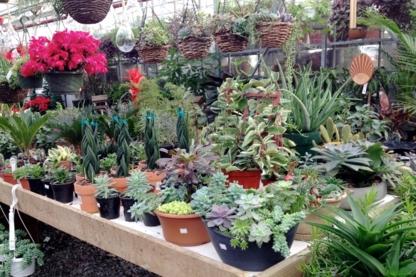 Amsterdam Greenhouses Ltd - Garden Centres - 604-465-6614