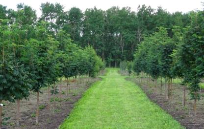 West Haven Nursery - Nurseries & Tree Growers - 403-728-2100