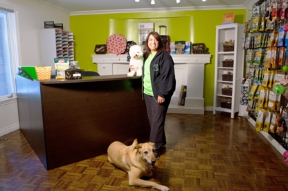 Doggieland - Pet Grooming, Clipping & Washing - 905-832-8700
