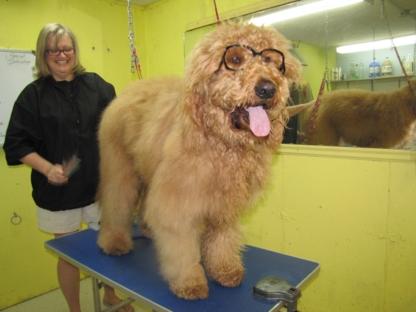 DogGone Beautiful - Pet Grooming, Clipping & Washing - 705-749-3220