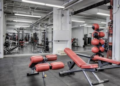 Dwell Gym - Gymnastics Lessons & Clubs - 416-465-6200
