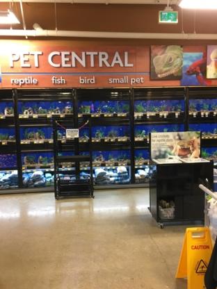 PetSmart - Magasins d'accessoires et de nourriture pour animaux - 604-454-1360