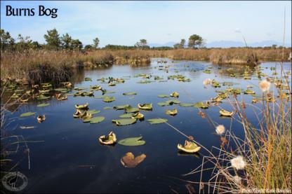 Burns Bog Conservation Society - Environmental Conservation & Ecological Organizations