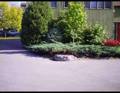 View Herbineige's Montréal profile