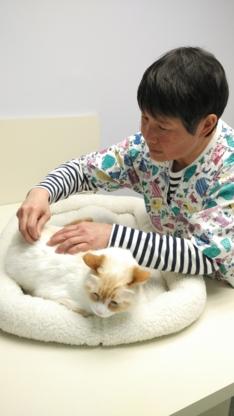 King Street Veterinary Hospital - Veterinarians