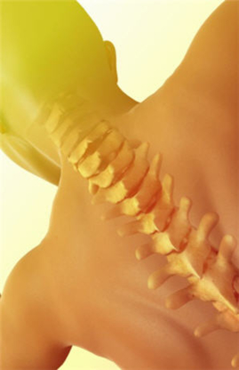 Chiropractic First Natural Health Group - Chiropractors DC - 905-844-4325
