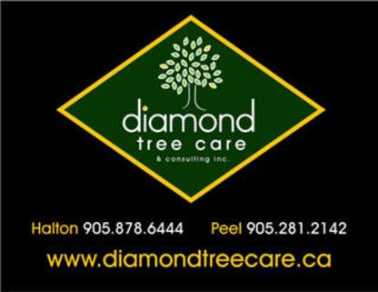 Diamond Tree Care & Consulting Inc - Tree Service