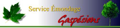 Service Emondage Gaspésiens - Service d'entretien d'arbres - 514-994-0127