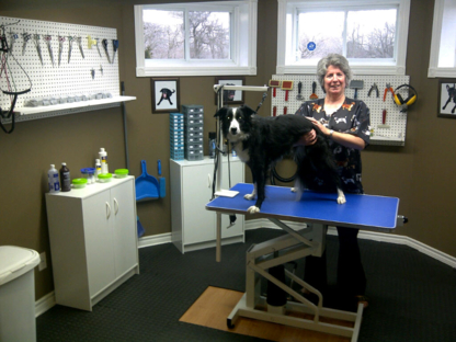 Barking Barber - Pet Grooming, Clipping & Washing - 905-774-3004