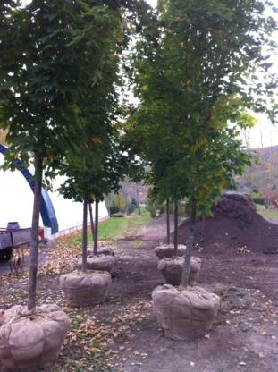 Horticulture Latrémouille - Centres du jardin - 819-455-9171