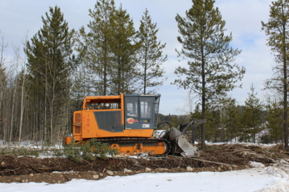 Eagle Valley Holdings Ltd - Land Clearing & Leveling - 250-963-7550