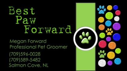 Best Paw Forward - Toilettage et tonte d'animaux domestiques - 709-596-0028