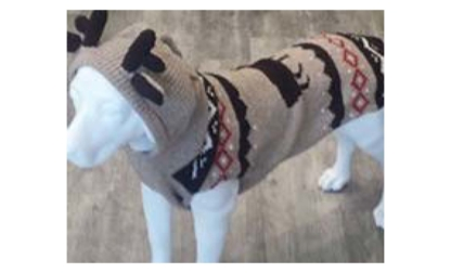The Bone & Biscuit Co - Magasins d'accessoires et de nourriture pour animaux - 306-545-2663
