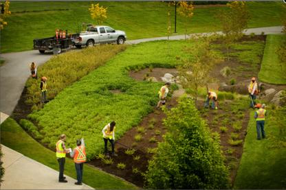 Ecoworks Landscape Services Inc. - Landscape Contractors & Designers