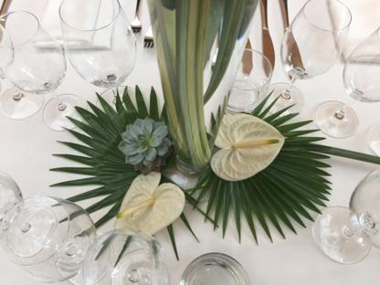 Fleuriste Coin Vert - Magasins de plantes d'intérieur