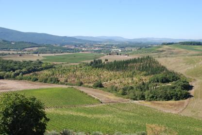 Latitude Wine Imports - Vins et spiritueux